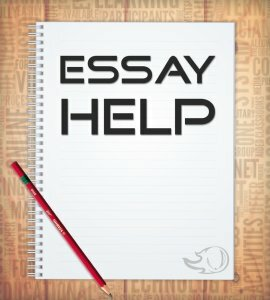 pay someone to do my essay students feedback on writing  pay someone to do my essay